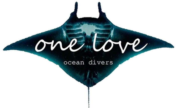 One Love Ocean Divers